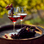 The Top 5 Red Wine Grapes In The World